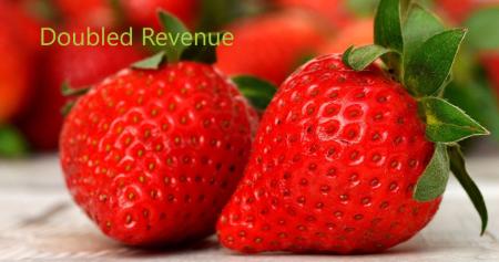 Enviropass Doubled Revenue 2021-2022