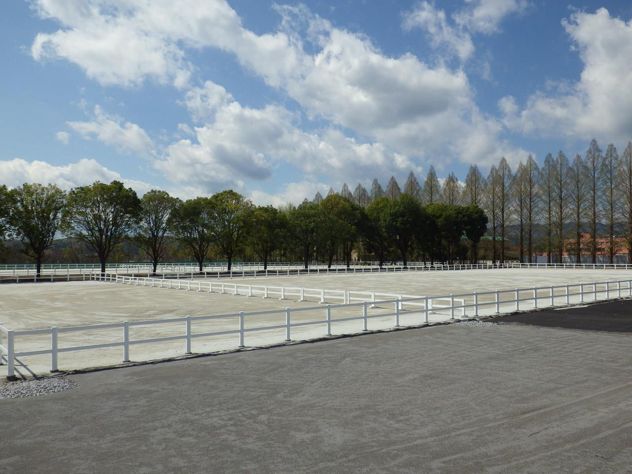 馬場舗装、馬場柵  スポーツ祭東京2013あきる野市特設馬術競技場