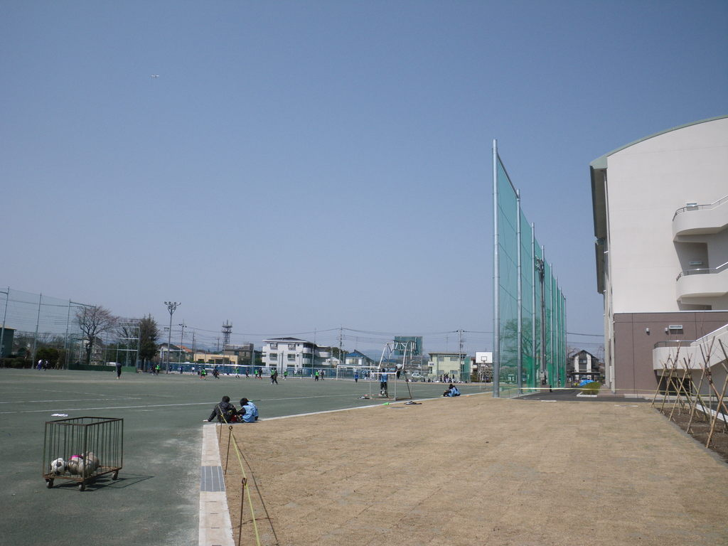 校庭芝生化及びグランドクレイ舗装工事 H15m防球ネット 武蔵村山市立第一中学校