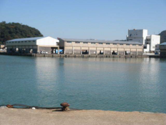 香住西港セリ市岸壁、香住西港赤灯台よりセリ市岸壁を見る。大型船の入出港があり、漁船の邪魔をしないように。みんなのアジ釣り場・・驚くことなかれ30cm以上もでる。かつて、40から80cm級スズキ、マコガレイ、イシガレイ、40cm以上のクロダイ、マゴチの実績場
