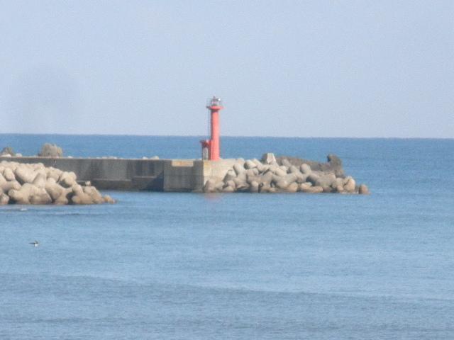 香住下ノ浜・赤灯台、小物釣り場、かつて90cmスズキ、40cm以上のクロダイ、テトラポットで根魚の大釣りの実績あり、他、アシ、アオリイカ