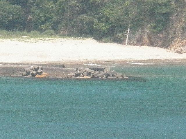 香住・佐津・訓谷の浜・川尻、当たりハズレの多い場所、砂浜は遠浅ではない。かつてはスズキの95cm、カレイの40cm級、大ギスなどの実績はある