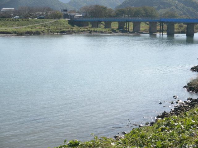 香住矢田川河口域、、スズキ40cm、80cm、大洪水の後、河口の形状がかわり、小型クロダイの大釣りなど、何らかの変化の後がねらい目ですねぇ。