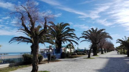 Lungomare San Benedetto del Tronto, Riviera delle Palme