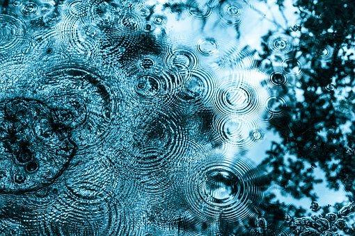 Was sich das Wasser und seine Wesen von uns Menschen wünschen