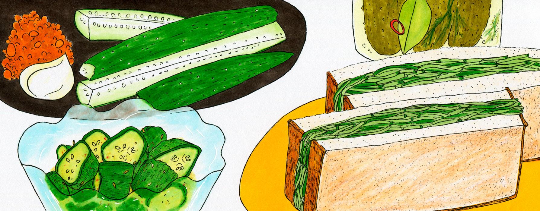 「栄養と料理」(女子栄養大学出版部)「機能性成分のひみつ」2018年7月号〜現在連載中