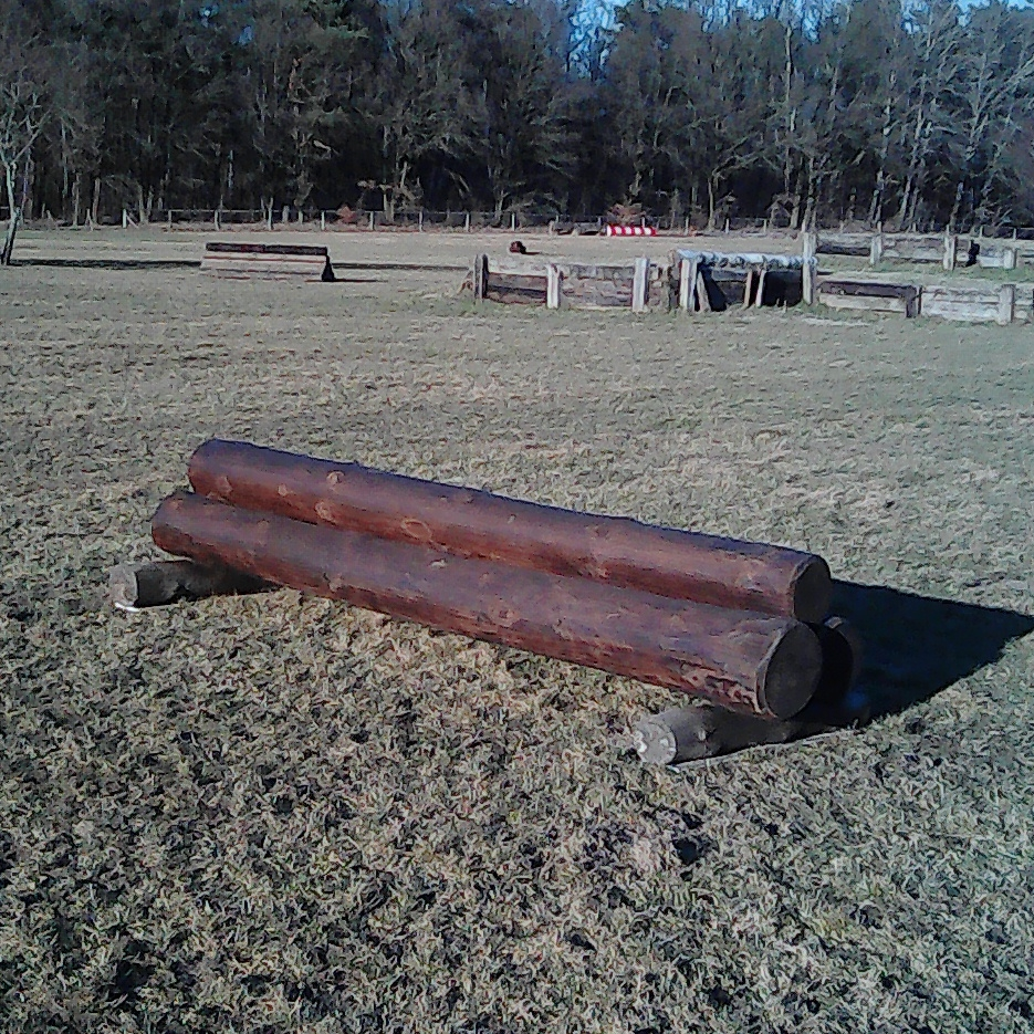 kleiner Holzstapel Höhe   600€   (bei ca 80cm und Breite 300cm)