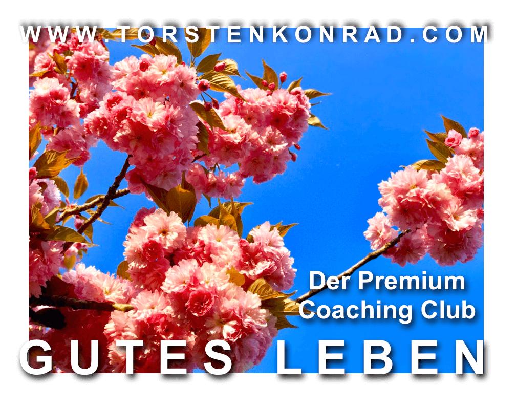 Premium Coaching -Jahres-Programm