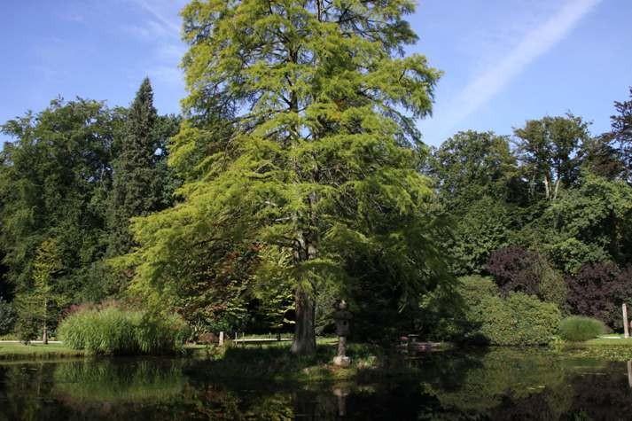 009_0032_16 Sept 2011_Gartenfest_Schlosspark