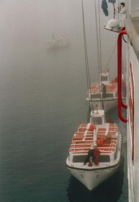 Ocean Monarch im Nebel vor Qaqortoq / Grönland