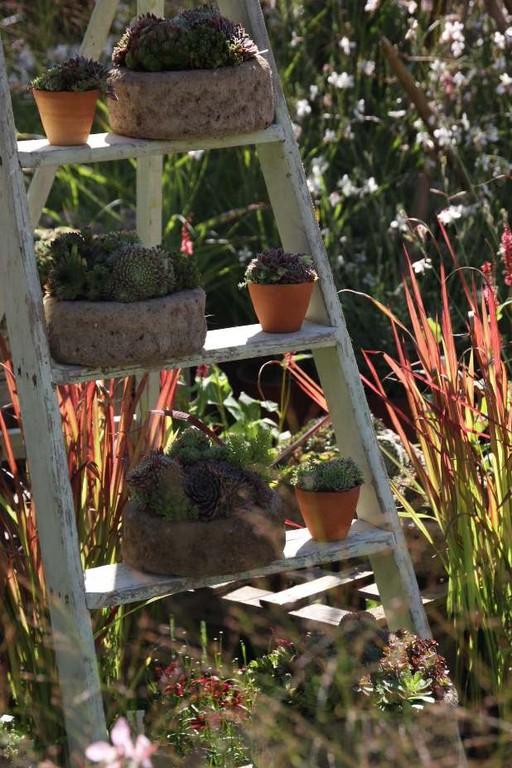 044_0159_16 Sept 2011_Gartenfest_Aussteller