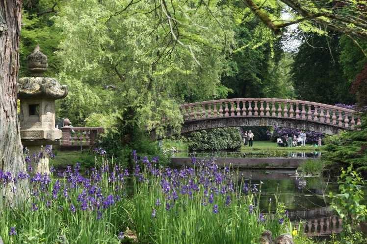 0121_19 Mai 2012_Rhododendron_Schlosspark_Teich_Brücke