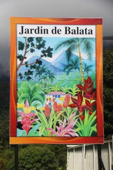 3961_05 DEZ 2013_Martinique_Jardin de Balata