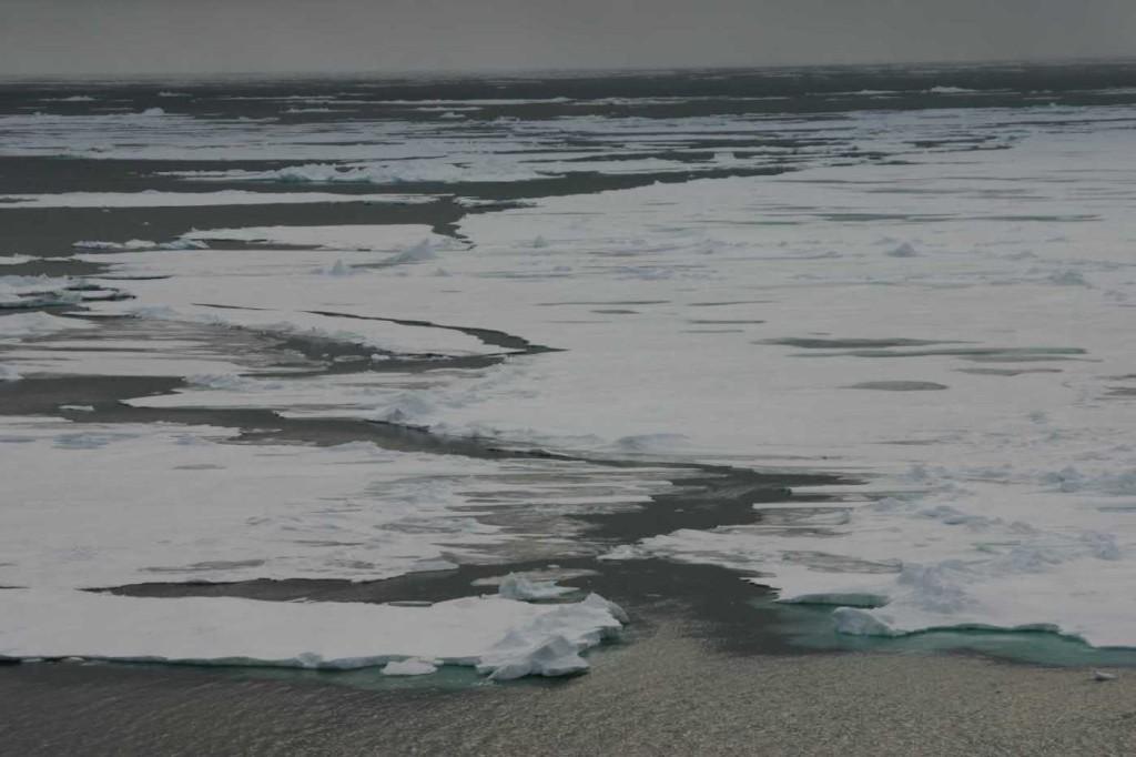 Bild 1261 - Spitzbergen, Packeisgrenze