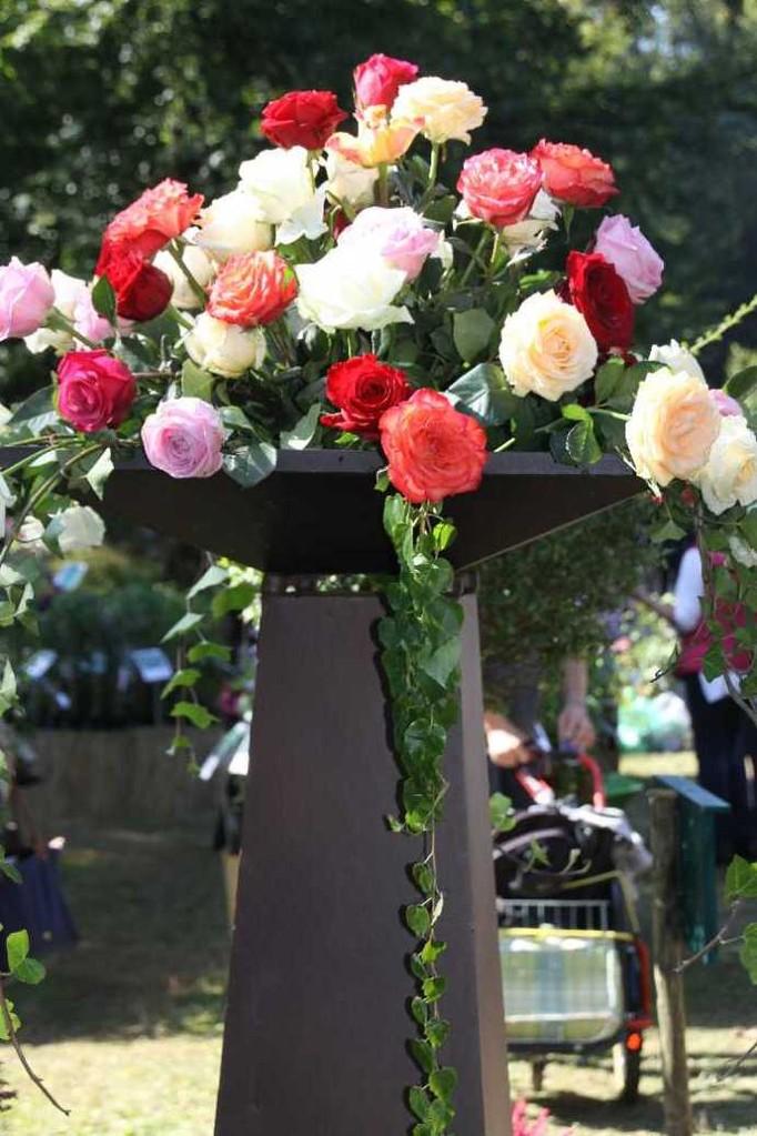 0031_22 Sept 2013_Gartenfest_Aussteller_Rosen
