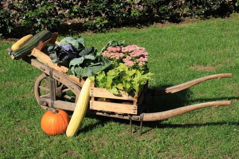 049_0089_17 Sept 2010_Gartenfest_Aussteller