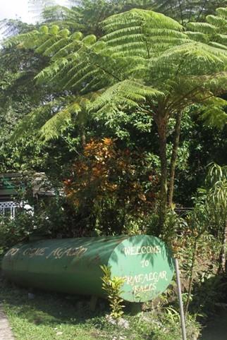 0951_25 NOV 2013_Dominica_Trafalgar Falls