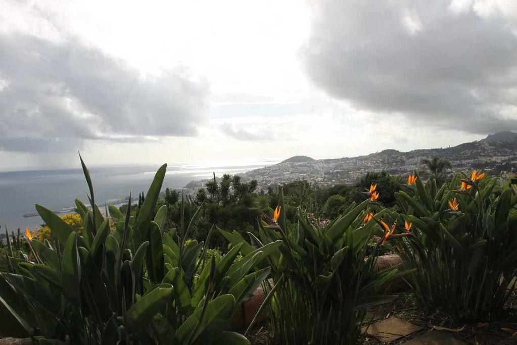 1243_14 Okt 2010_Madeira_Monte_Jardim Botanico_Aussicht
