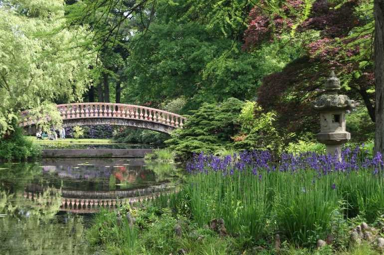 0128_19 Mai 2012_Rhododendron_Schlosspark_Teich_Brücke