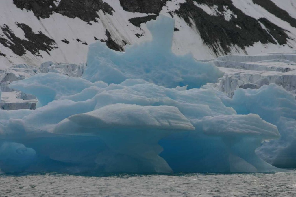 Bild 1008 - Spitzbergen, Magdalenenbucht, Zodiacfahrt