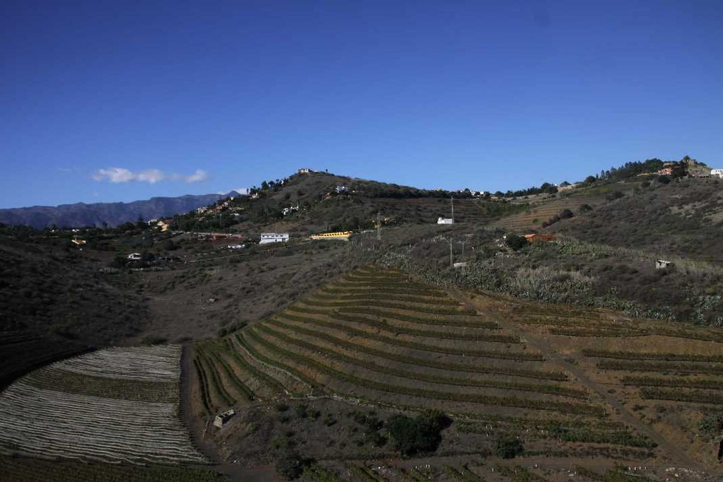 1502_16 Okt 2010_Gran Canaria_Pico de Bandama