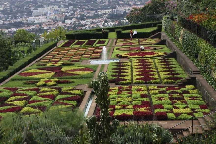 1239_14 Okt 2010_Madeira_Monte_Jardim Botanico