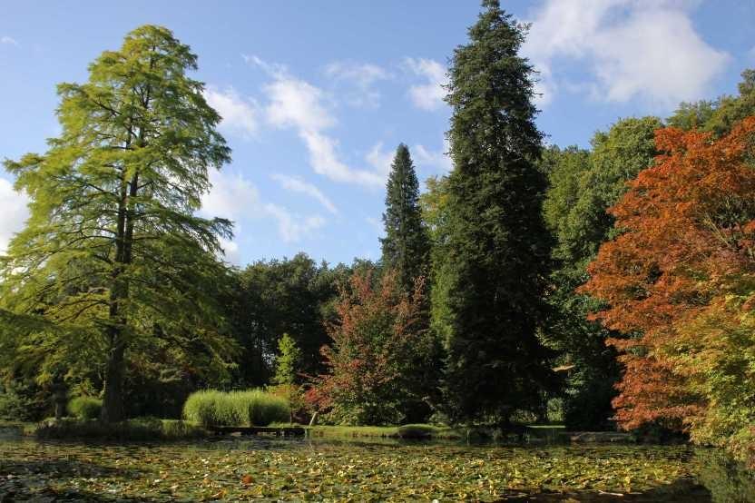 010_0032_17 Sept 2010_Gartenfest_Schlosspark