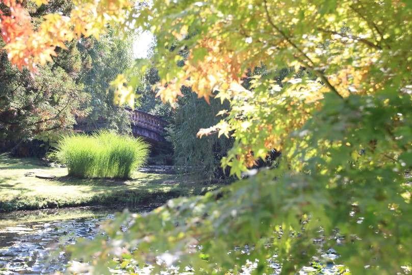022_0100_16 Sept 2011_Gartenfest_Schlosspark