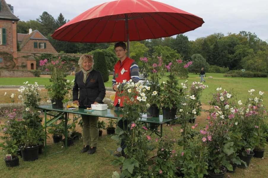 122_0658_18 Sept 2011_Gartenfest_Aussteller_Barbara Siehl