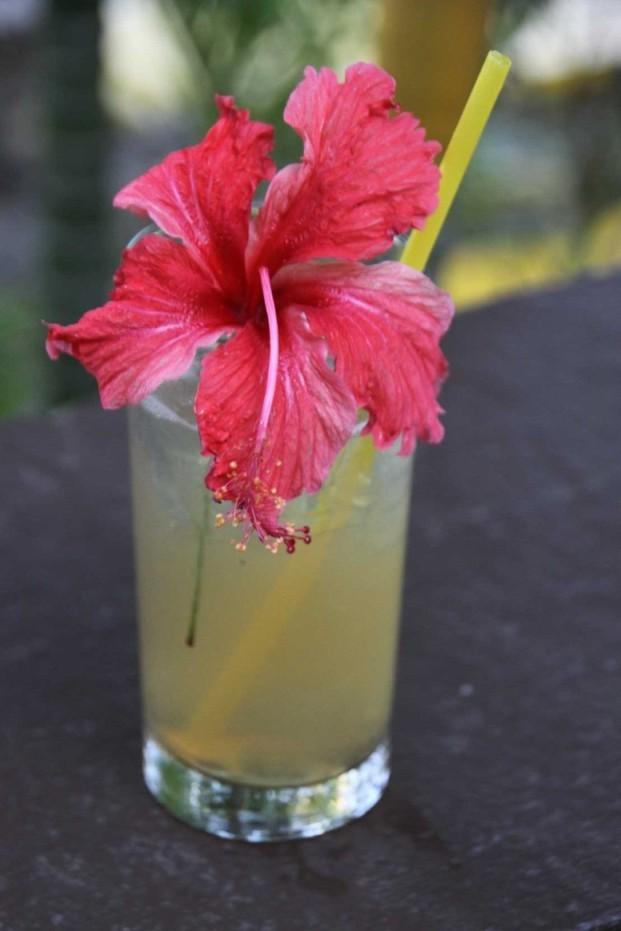 3724_04 DEZ 2013_Bequia_Firefly Plantation_Restaurant_Guave-Drink