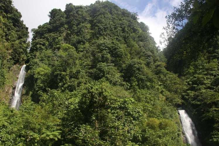0918_25 NOV 2013_Dominica_Trafalgar Falls