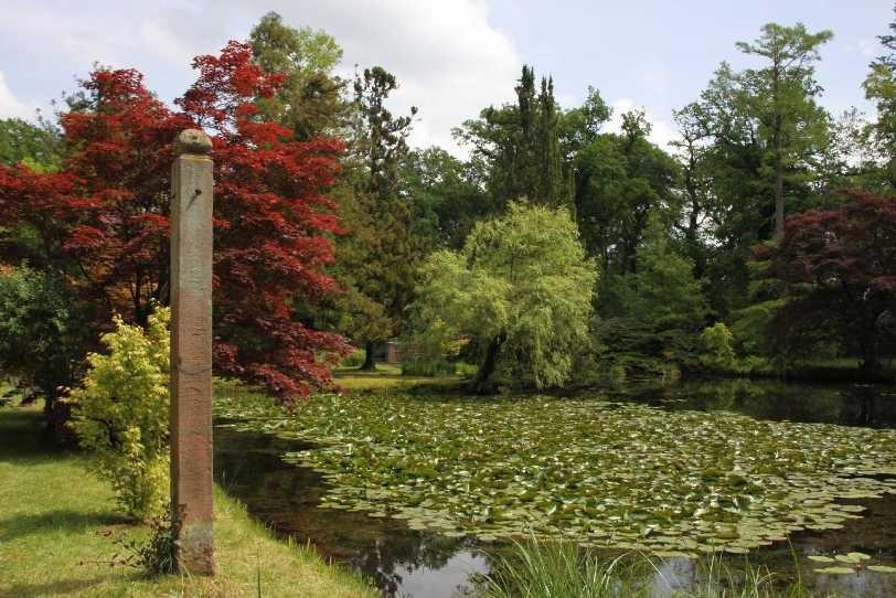 0138_19 Mai 2012_Rhododendron_Schlosspark_Teich