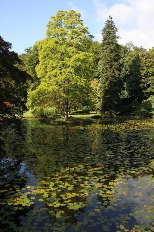 007_0023_17 Sept 2010_Gartenfest_Schlosspark