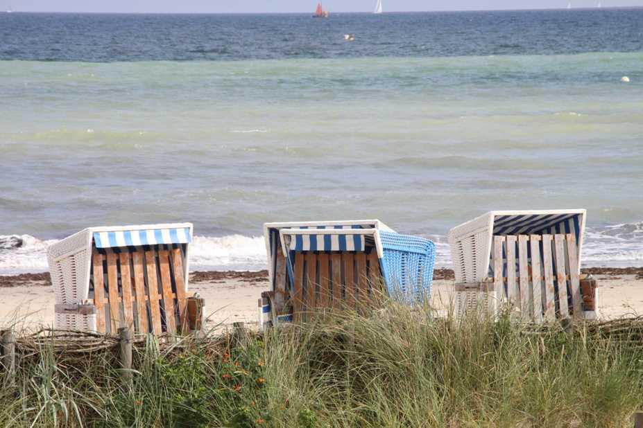 0199_13 Aug 2011_Damp_Strand