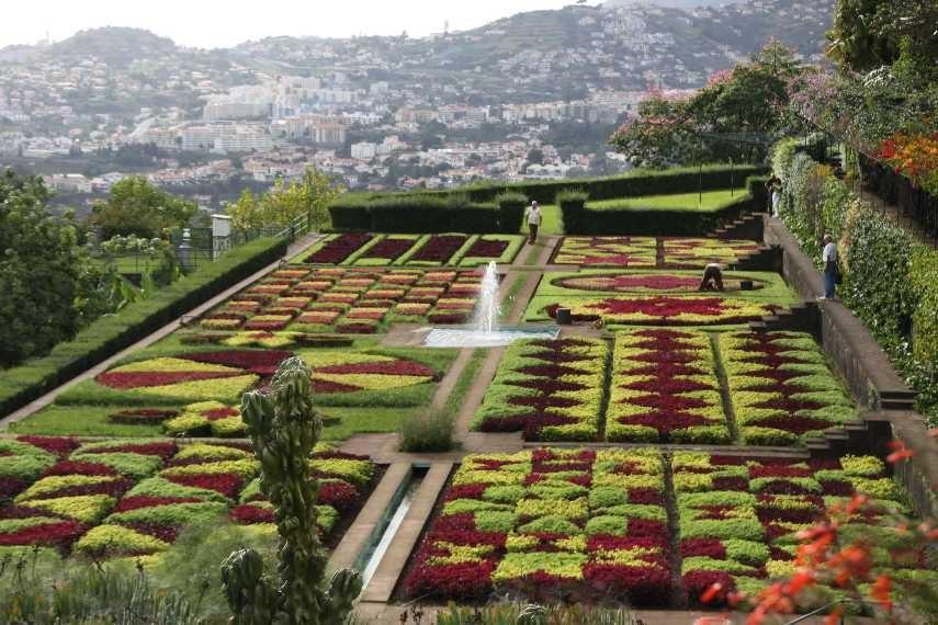 1264_14 Okt 2010_Madeira_Monte_Jardim Botanico