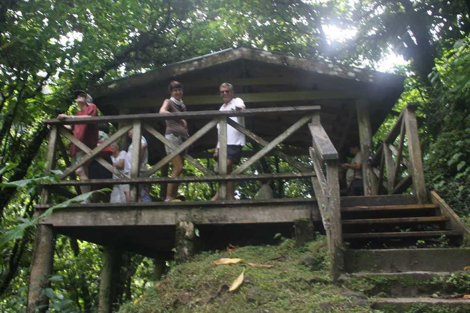 0937_25 NOV 2013_Dominica_Trafalgar Falls