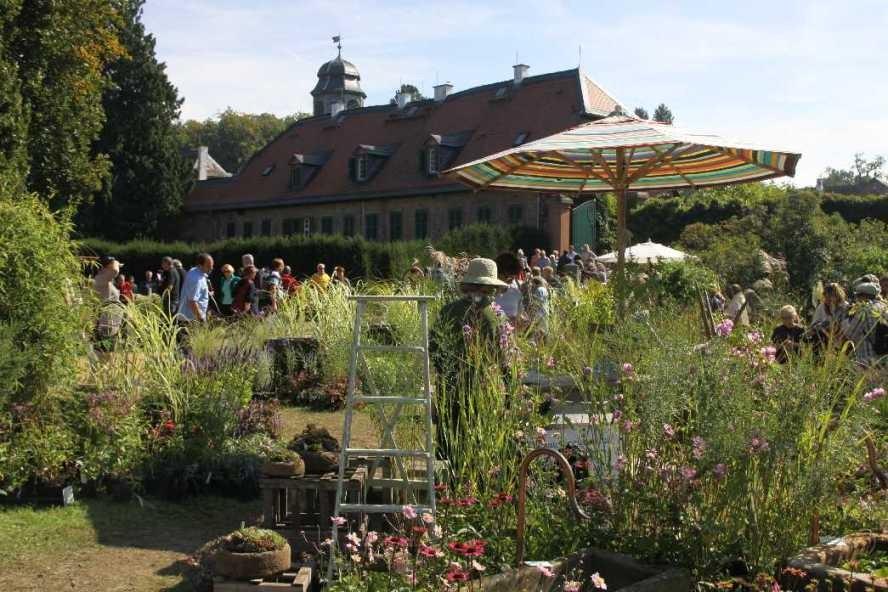 0098_22 Sept 2013_Gartenfest_Schloss Wolfsgarten_Aussteller