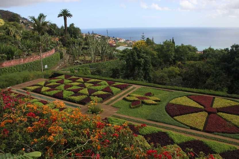 1224_14 Okt 2010_Madeira_Monte_Jardim Botanico