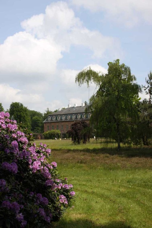 0023_19 Mai 2012_Rhododendron_Schloss Wolfsgarten