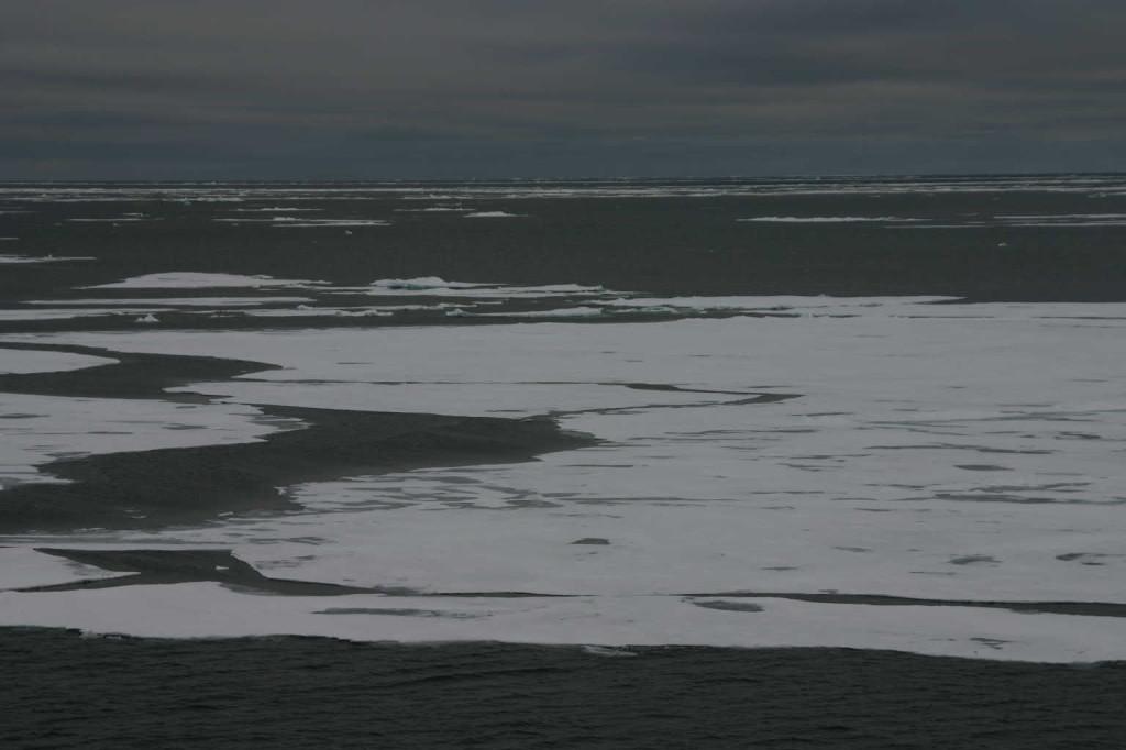 Bild 1253 - Spitzbergen, Packeisgrenze
