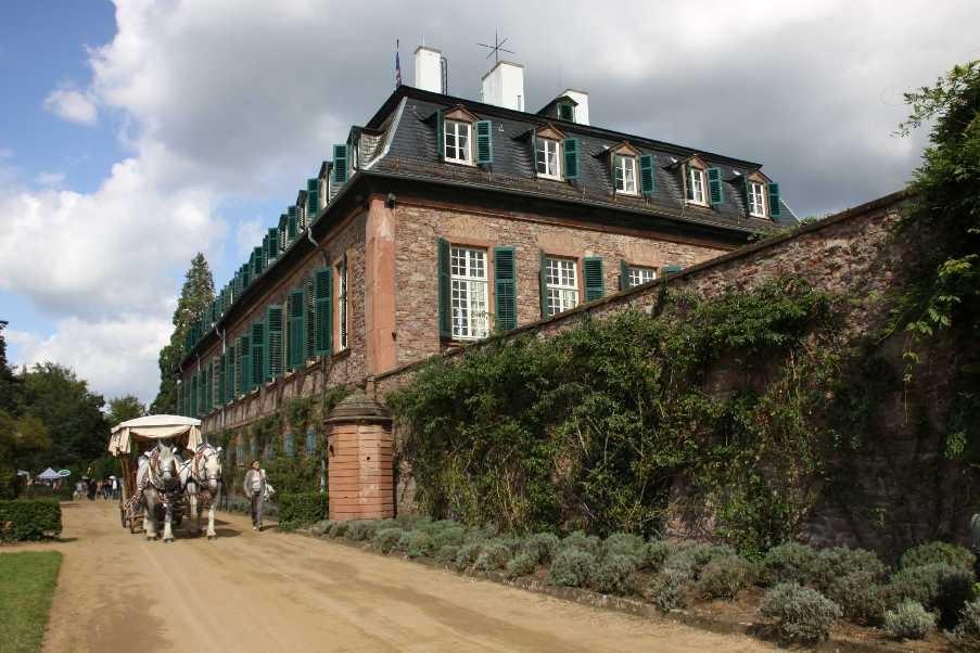 177_0294_17 Sept 2010_Gartenfest_Schloss Wolfsgarten_Percheron-Pferde