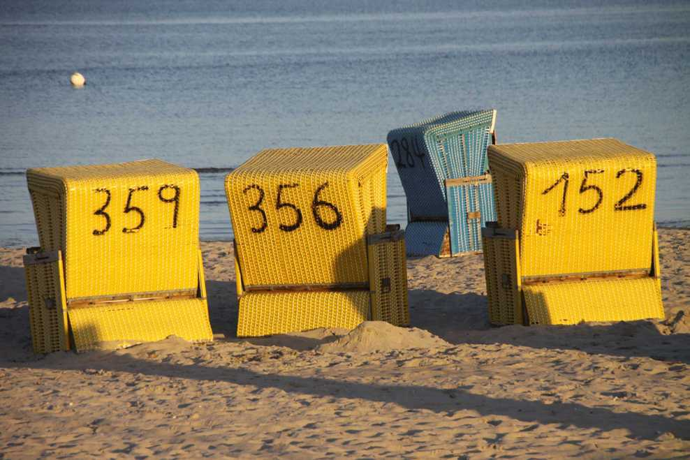 0146_05 Aug 2011_Damp_Strand