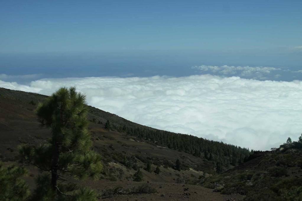 1966_17 Okt 2010_Teneriffa_La Esperanza Wald_Wolken