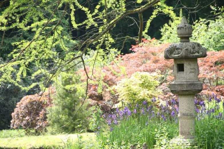 0144_19 Mai 2012_Rhododendron_Schlosspark_Vogelhaus_Iris