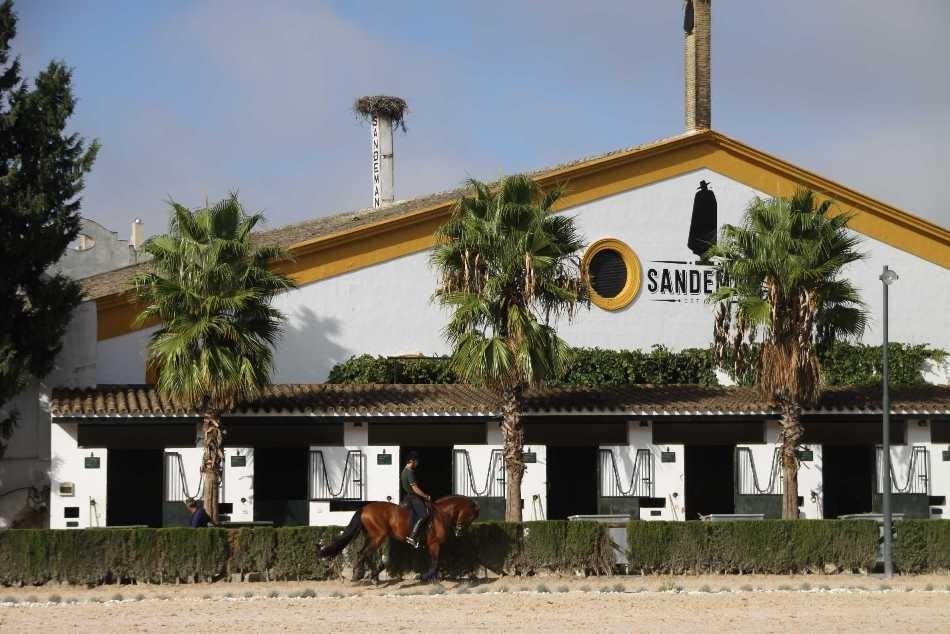 0382_11 Okt 2010_Jerez_Real Escuela Andaluza_Training