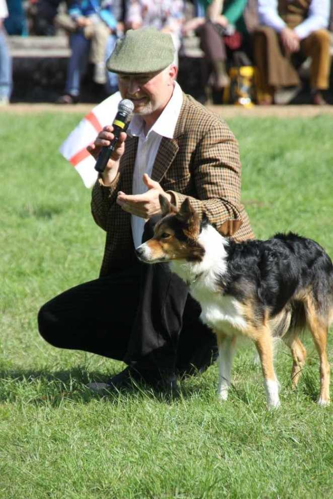0139_22 Sept 2013_Gartenfest_Bordercollies & Heidschnucken