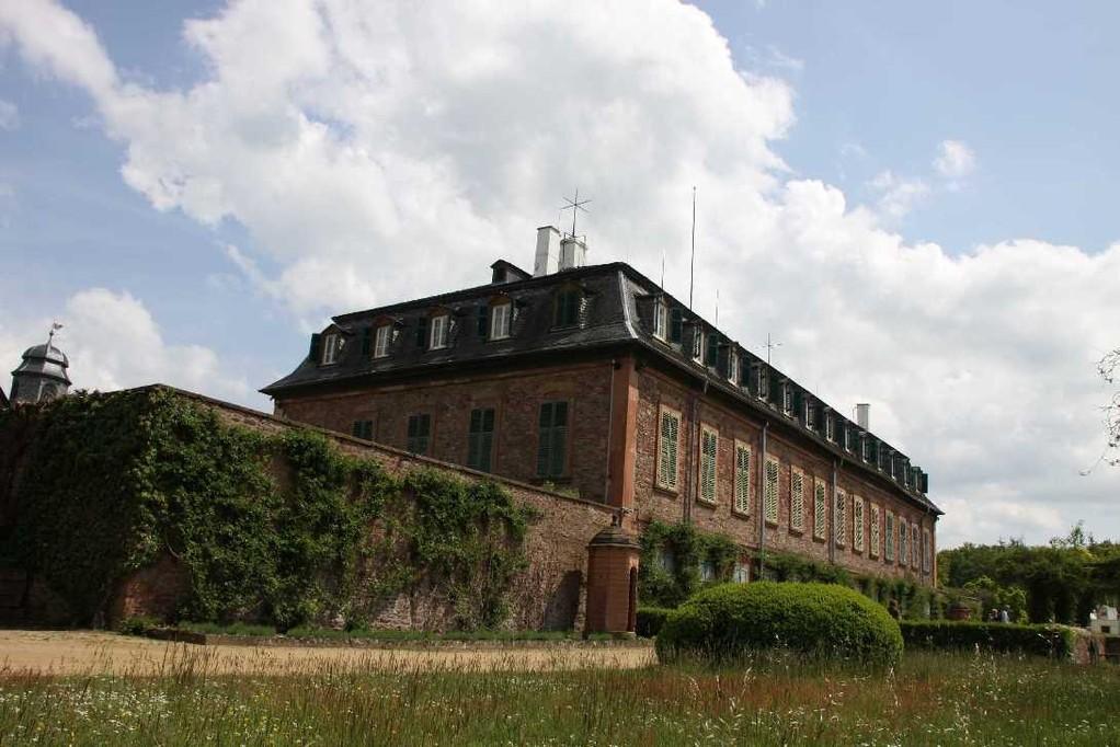 0173_19 Mai 2012_Rhododendron_Schloss Wolfsgarten