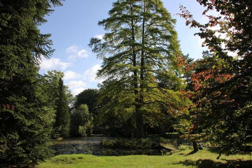 011_0033_17 Sept 2010_Gartenfest_Schlosspark