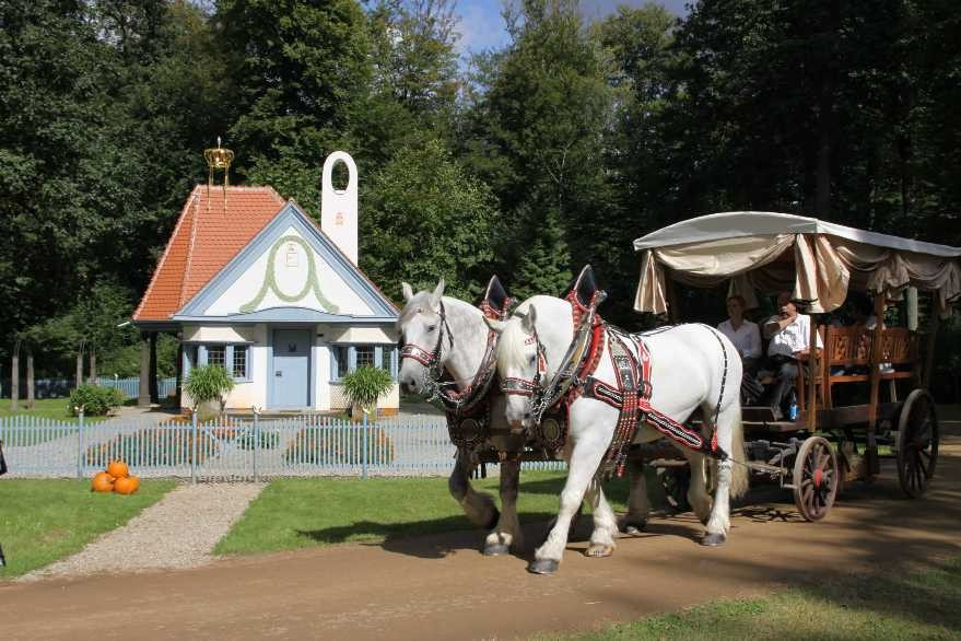179_0304_17 Sept 2010_Gartenfest_Prinzessinnenhaus_Percheron-Pferde