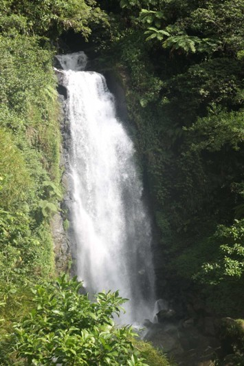 0940_25 NOV 2013_Dominica_Trafalgar Falls